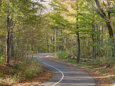 IMAGE: The long and winding road / That leads to your door / Will never disappear. //