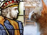 IMAGE: A cat may look at a king.