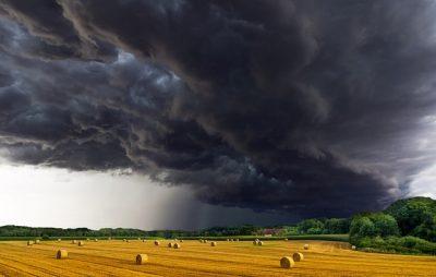 IMAGE: No rain, no grain.