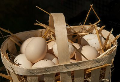IMAGE: Don't put all your eggs in one basket.