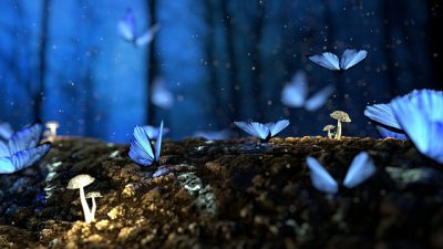 IMAGE: Once Zhuang Zhou dreamed he was a butterfly, a fluttering butterfly. What fun he had, doing as he pleased! He did not know he was Zhou. Suddenly he woke up and found himself to be Zhou. He did not know whether Zhou had dreamed he was a butterfly or a butterfly had dreamed he was Zhou.