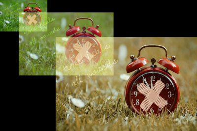 IMAGE: Time heals all wounds. [Time heals wounds.] / Time is a great healer.